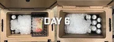 Ice remaining day 6