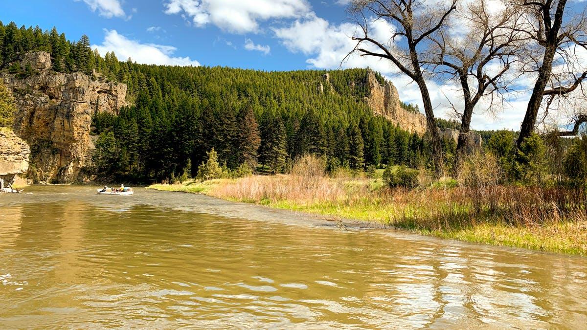 rafting the Smith River, Montana