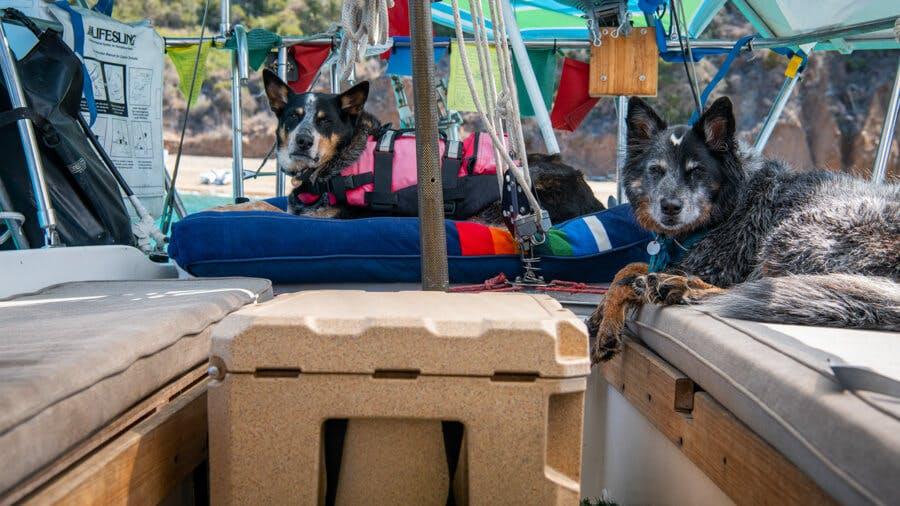Sloop Sailing Catalina Island