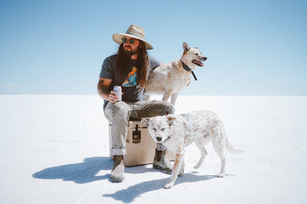 doggos at the salt flats