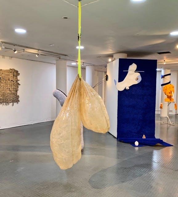 'Teaser' - Darwin Gallery, RCA, Kensington