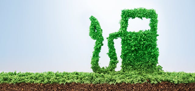 Alternative Fuel: What it is. Fuel economy. Best fuel alternative.