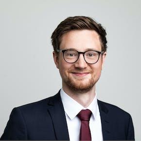 Peter Hoffmann, Consultant, Cassini Consulting