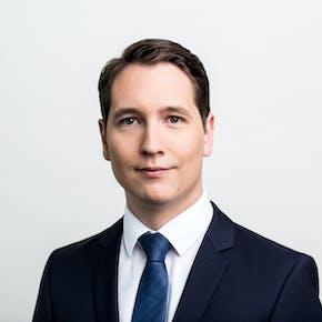 Jörg Elzer, Cassini Consulting