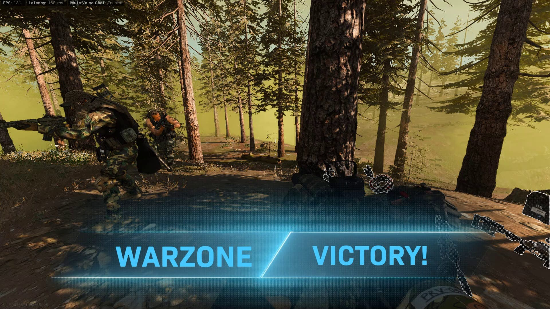 Warzone Victory Screen