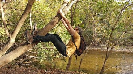 Daniel Krupka hangs from a tree. A creek is in the background.