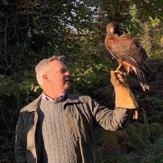 Dave Braig lifting a hawk perched on a falconry glove.