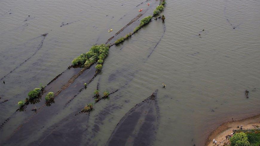 Photograph of shipwrecks at Mallows Bay