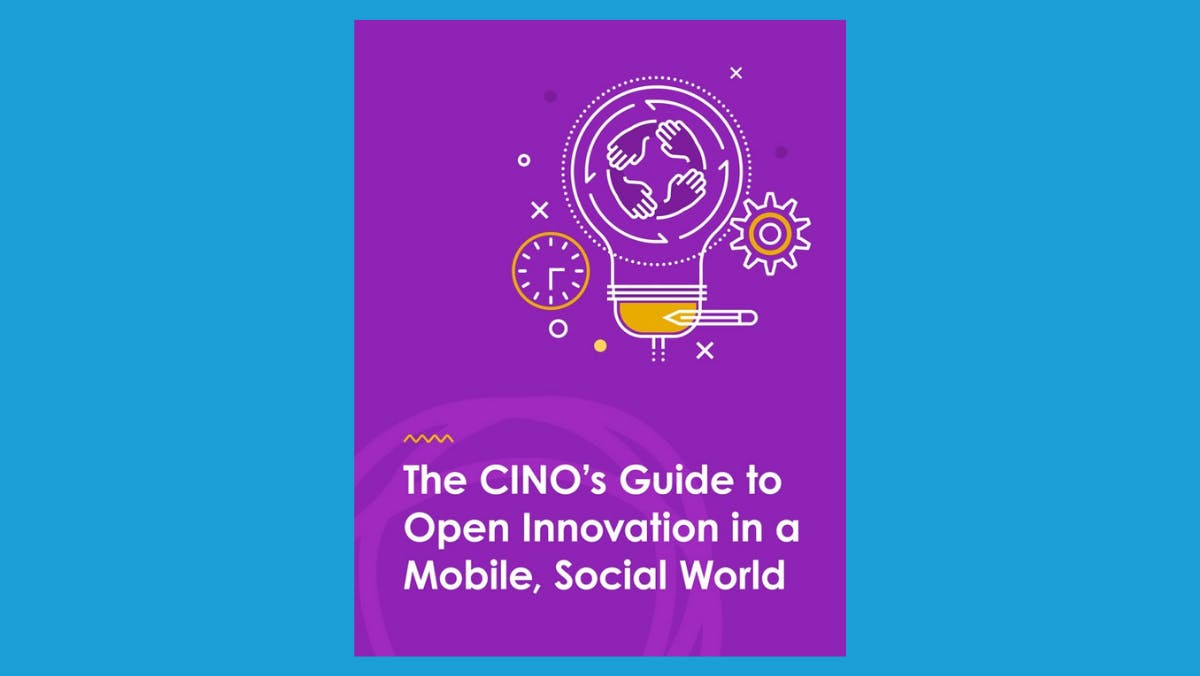 A digital image of The CINO's Guide ebook cover