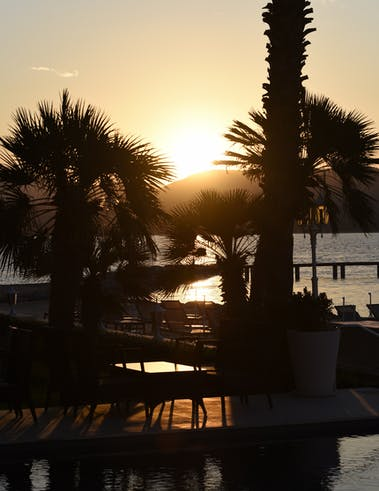 Soirées Riviera