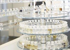 Consultation parfums