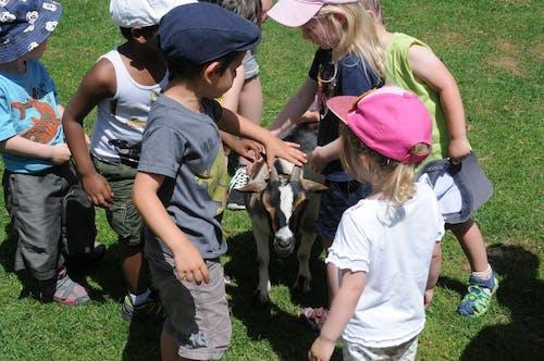 Chrysalide jardin d'enfants 2020