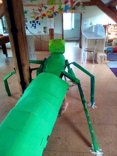 Un insecte en carton