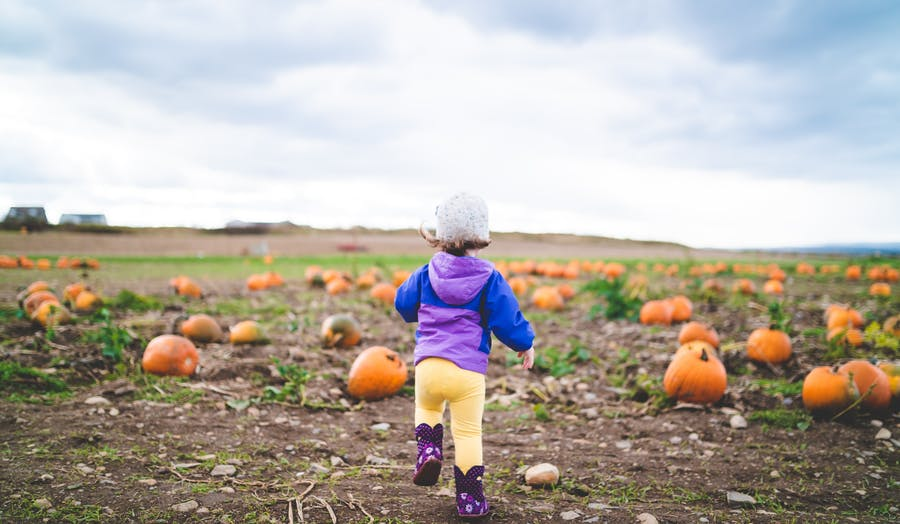 Baby in a pumpkin patch