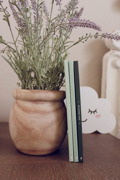 Monthbook with potted plant