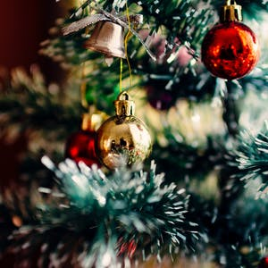 ornaments on an evergreen tree