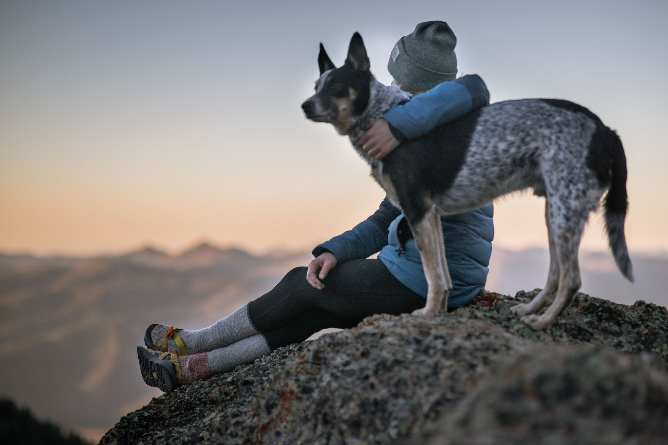 Dog and owner on hike