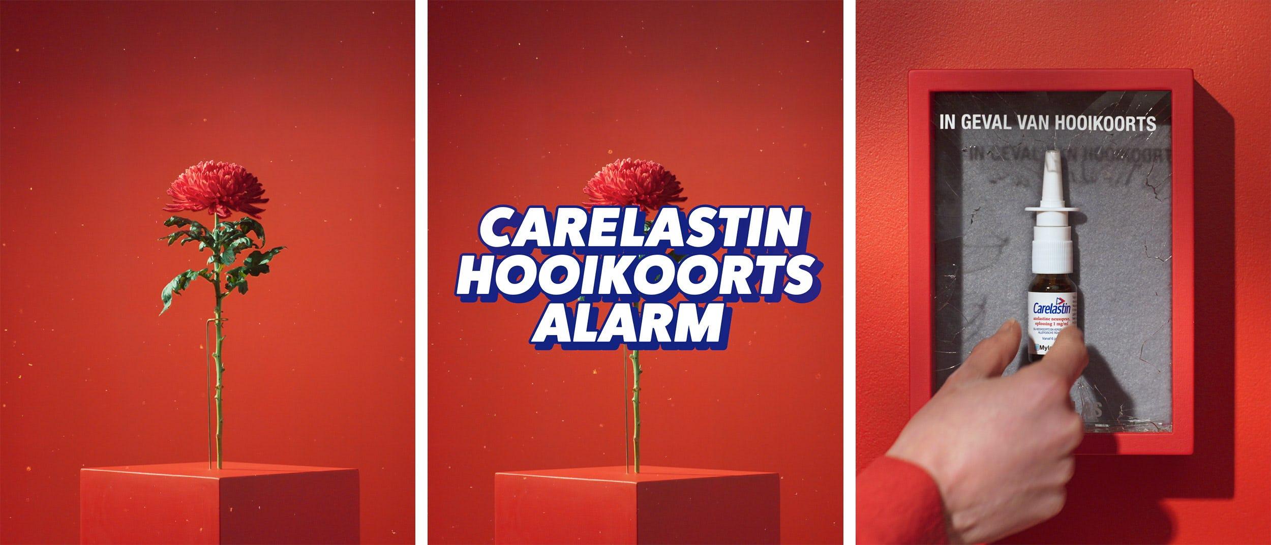 Carelastin - Viatris: Chunk Creative Agency - Amsterdam   London