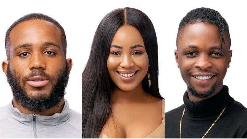 BbNaija housemates, Kiddwaya, Erica and Laycon (the love triangle)