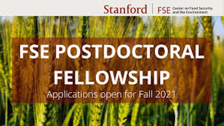 stanford center on food security and environment postdoctoral fellowship 2021