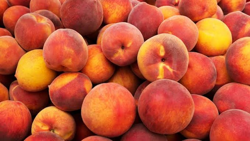 The US Food and Drug Administration while investigating a salmonella outbreak in nine states have linked it to peaches tainted with the salmonella bacteria