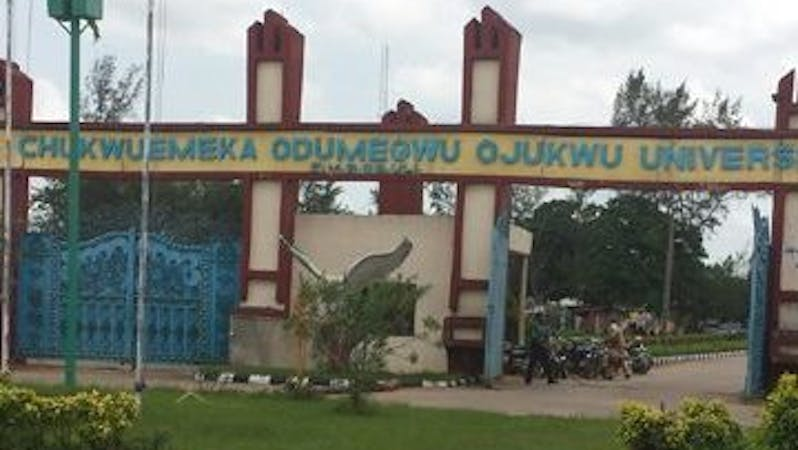 Many lecturers of the Anambra State university - Chukwuemeka Odumegwu Ojukwu University have backed out from the ongoing nationwide strike by the Academic Staff Union of Universities.