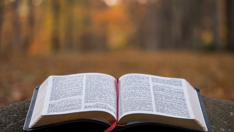 The holy bible, is an ancient book of prophetic writings, a doctrine and way of life