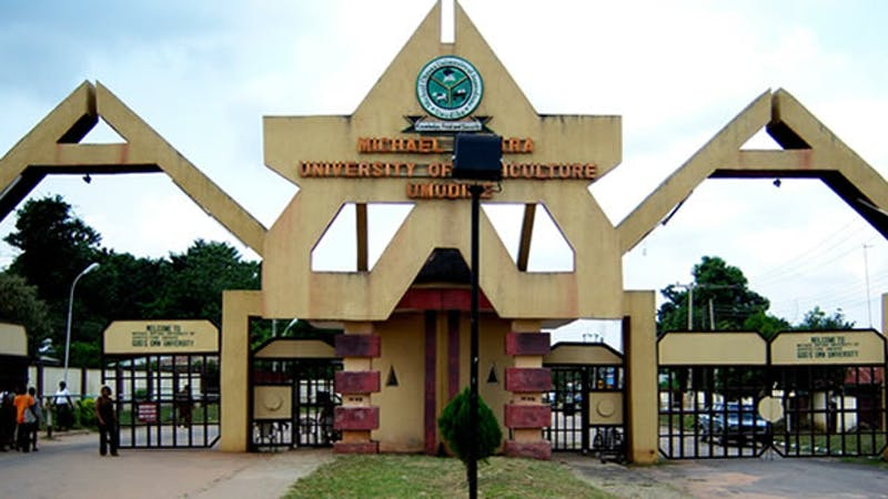 The list of courses that are offered Michael Okpara  University of Agricultural Umudike, MOUAU