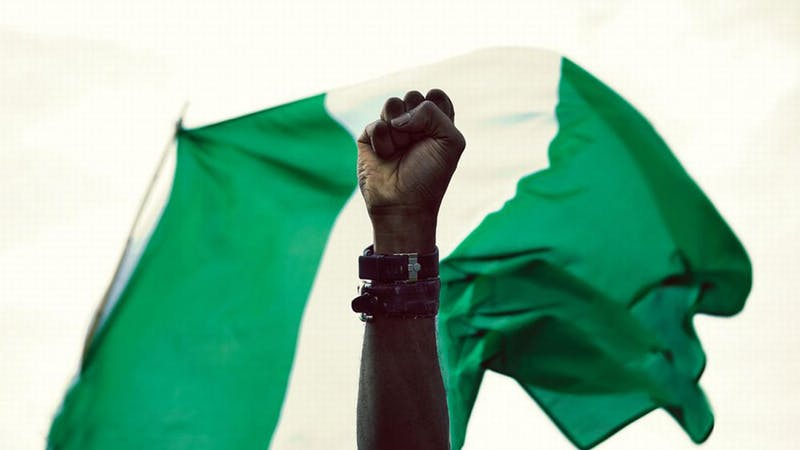 Nigerian flag with a fist as a symbol of activism.