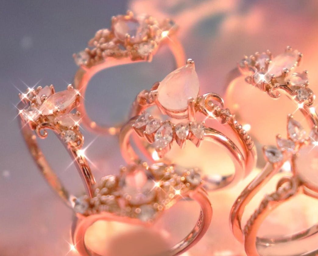 Bisoulovely rings