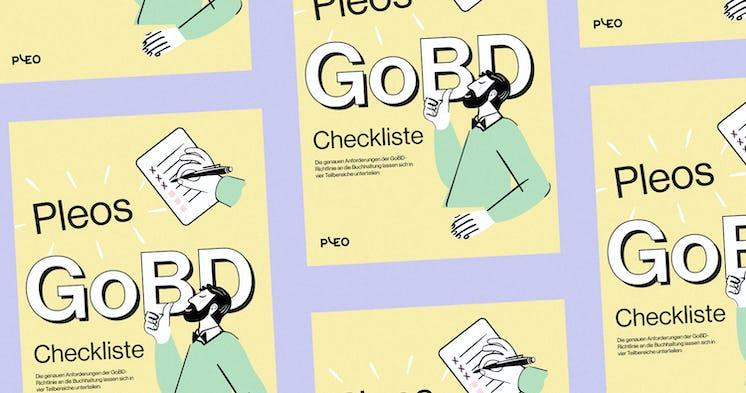 Pleos GoBD-Checkliste