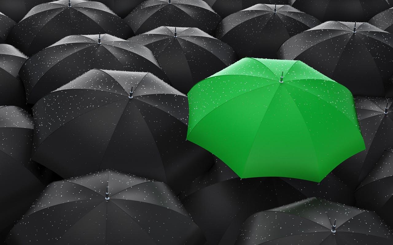 Eine Menge von schwarzen Schirmen, in der ein grüner Schirm sichtbar ist.