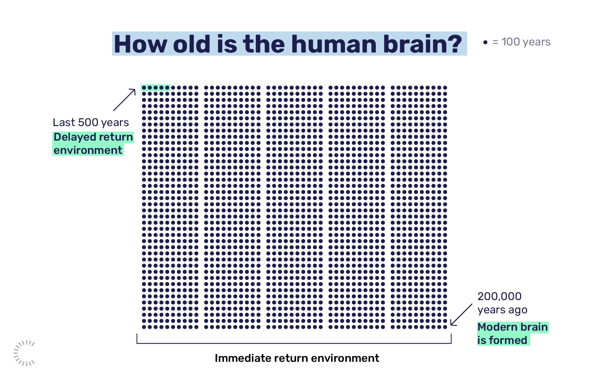How old is the human brain?