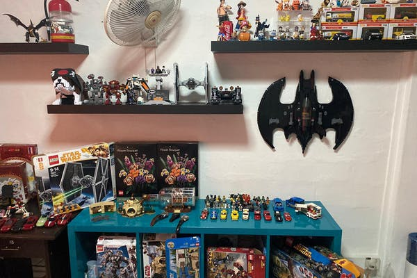 LEGO collection in a room, batman, dog, star wars