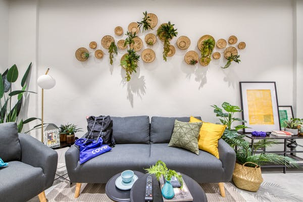 living area at 460A Geylang, with indoor plants decorated on the wall, being decked into rattan baskets