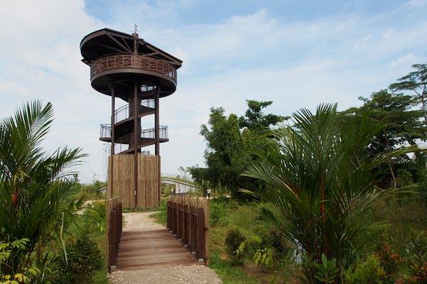 Kranji Marshes tower
