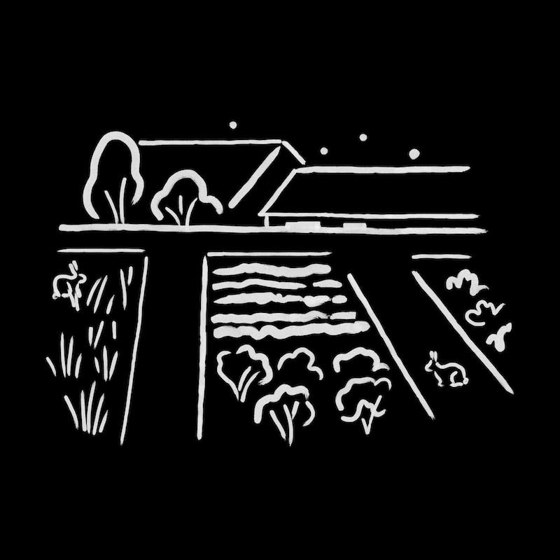 Night Urban Agriculture, Illustration by Charlotte Trounce for Covers