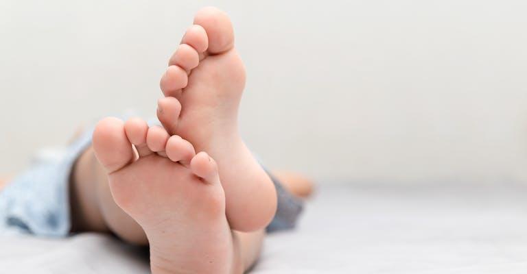 Anatomie Fuß