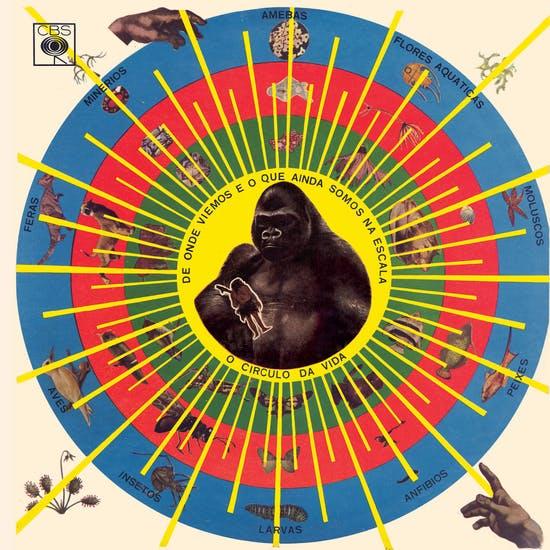 Imagem da capa do álbum Krishnanda