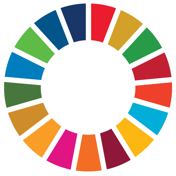 Assessing the SDGs: marrying top-down data with crowdsourced insight