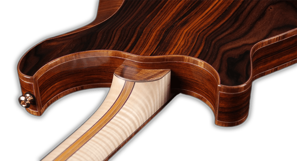 Hollowbody neck joint view.