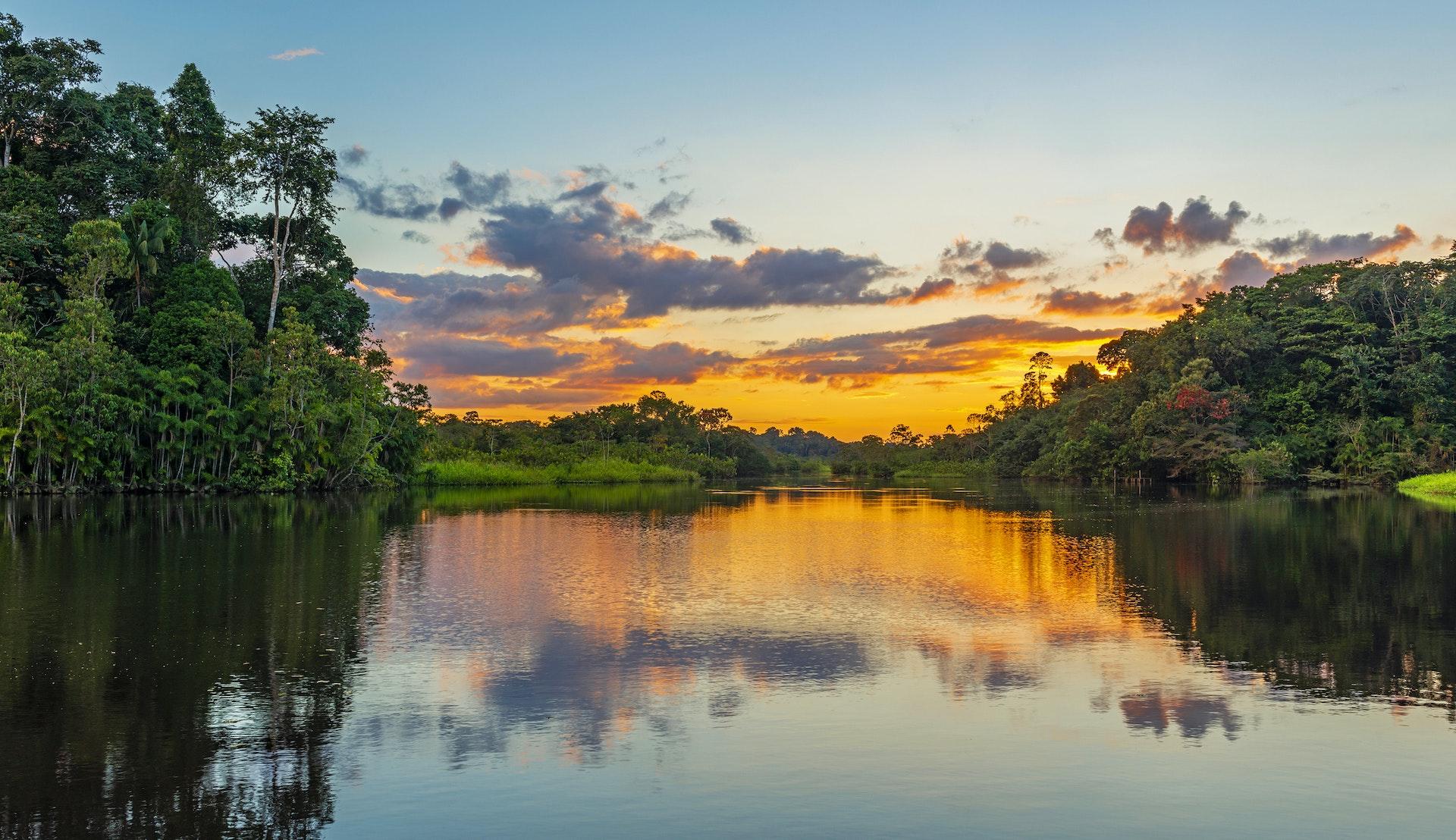 Amazonas, Sør-Amerika @SL_Photography. Getty Images