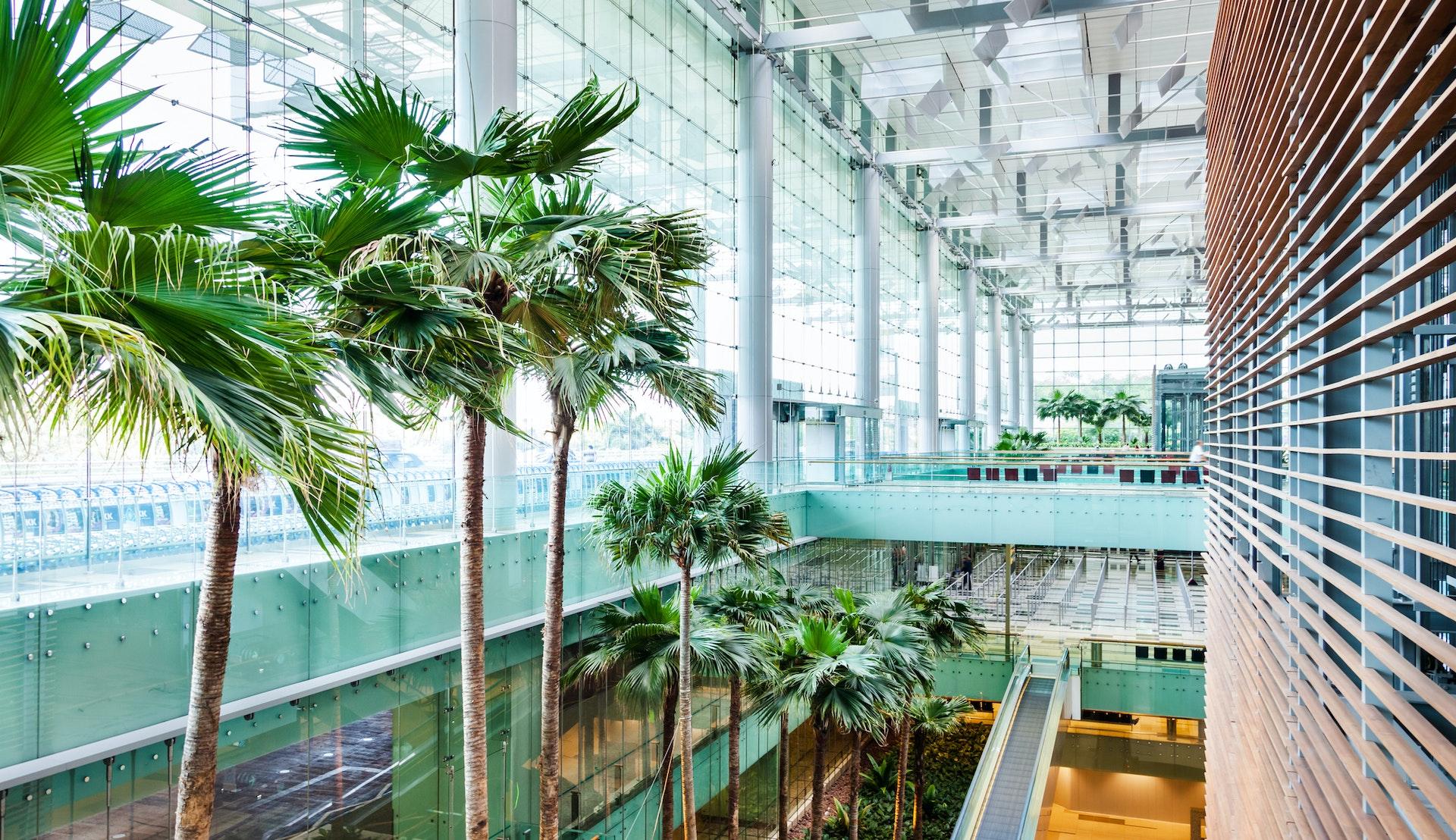Fra Changi lufthavn © TommL, Getty Images