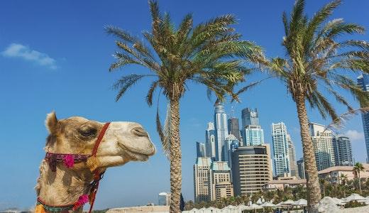 Dubai, Emiratene