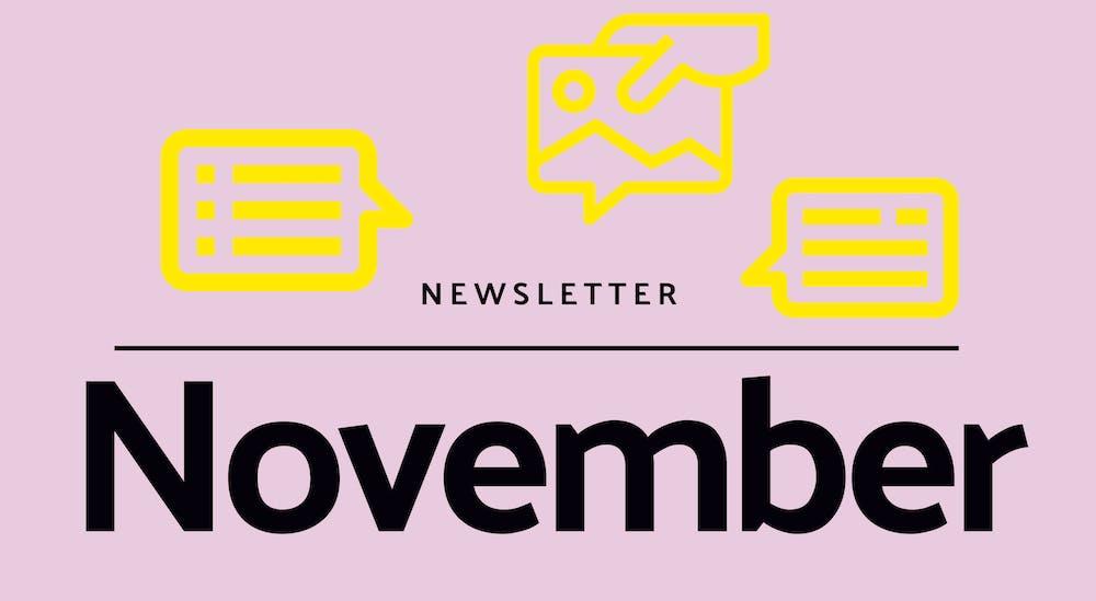Monthly newsletter - November 2020