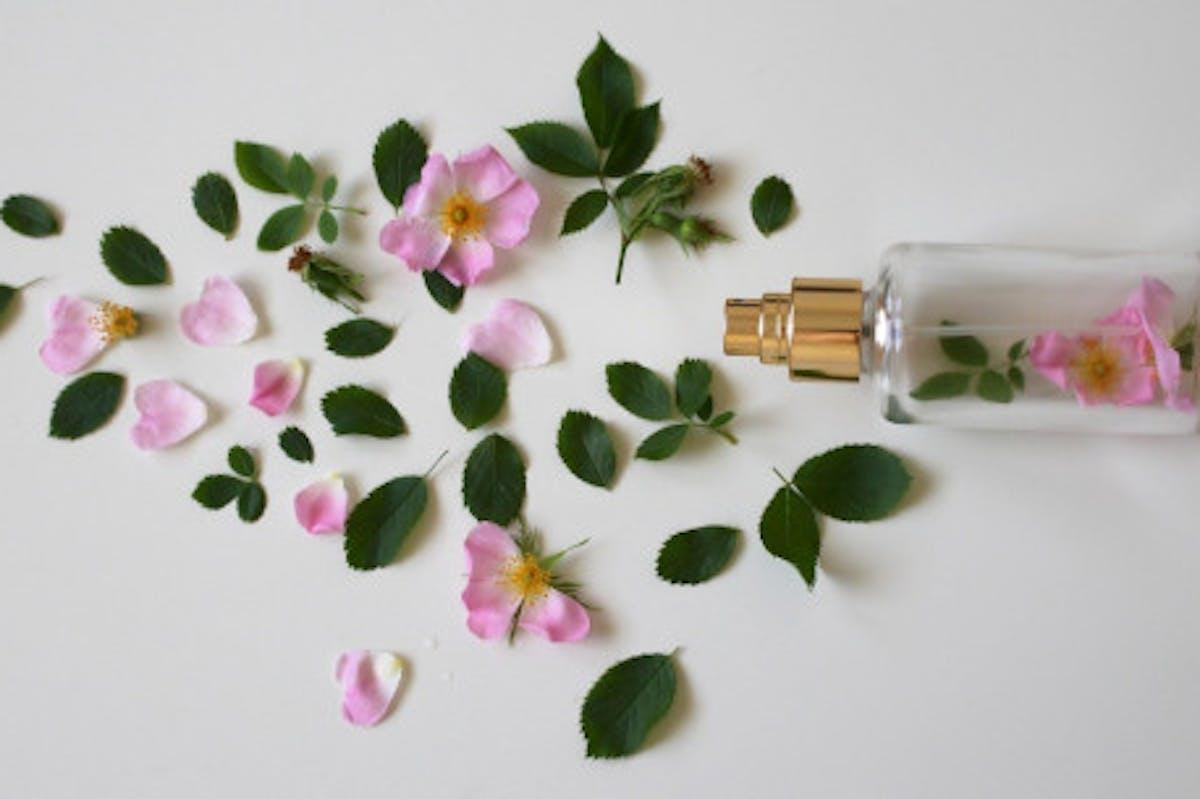 Pétalas de flores e frasco de perfume