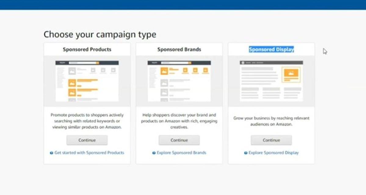 Amazon Campaign
