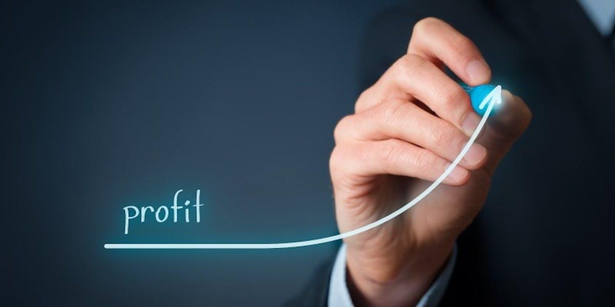 Maximize Profit Margins