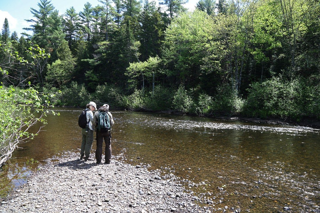NCC staff doing field work at the Bartholomew River, near Miramichi, New Brunswick.  Photo credit: Mike Dembeck