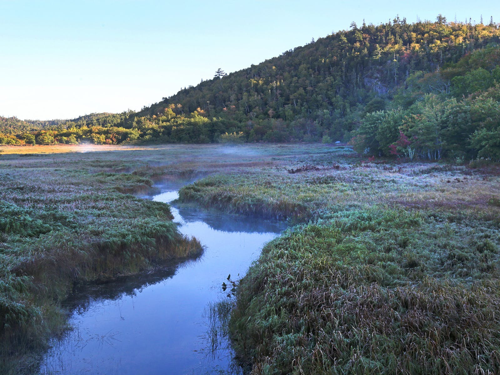 NCC Floodplain near the Musquodoboit River, NS